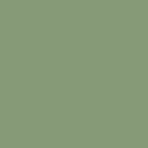 light green tennis court paint